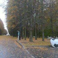 Осень в парке :: Митя Дмитрий Митя