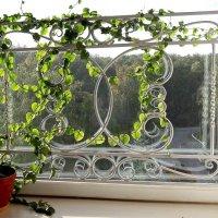 Симпатичненько смотрится окно... :: Зинаида Каширина