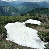 Лето в горах :: alers faza 53
