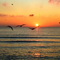 Гимн восходу солнца :: Татьяна Лютаева
