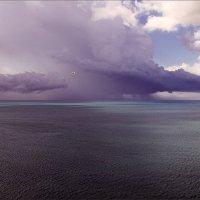 Затишье перед бурей. :: Анатолий Бахтин