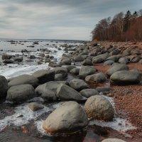 Финский залив. :: Юрий Слепчук