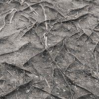 Земные вены. :: Sergii Ruban