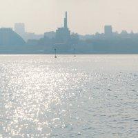 Туман :: Алексей Михалев