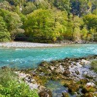 Горные реки Абхазии :: Николай Николенко