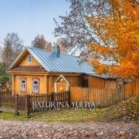 Желтый дом :: Юлия Батурина