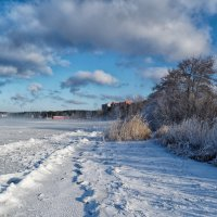Замерзающий Иртяш. :: Сергей Адигамов