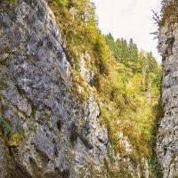 Осень в горах Абхазии :: Николай Николенко