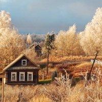 Украшение инея :: Юрий Пучков