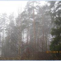 туман :: Maikl Smit