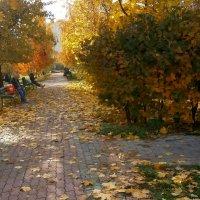 Осень в городе :: Ольга Довженко