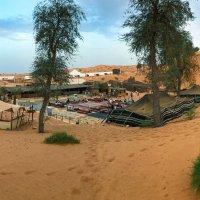 Бедуинский лагерь в Аравийской пустыне :: Светлана Карнаух