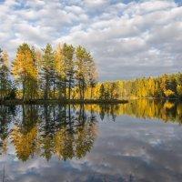 Озеро Исо- Ийярви. :: Наталия Владимирова