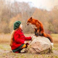 Лисьи истории :: Фотограф Ирина Белянина
