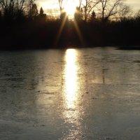 лёд на реке :: рыба на лошади