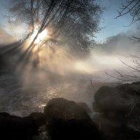 Буйство рассветного тумана.... :: Андрей Войцехов