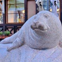 Балтийский тюлень :: Леонид Иванчук