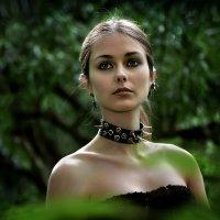 Портрет девушки в лесу на закате.... :: Андрей Войцехов