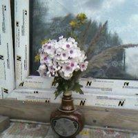 Флоксы :: Дмитрий Никитин