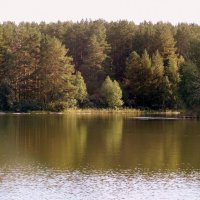 У реки . :: Мила Бовкун