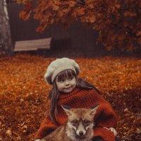 Краски осени.. :: Макс Беккер