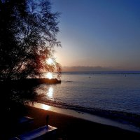 Отблеск восходящего солнца :: Natali