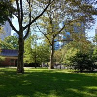 В парке Нью- Йорка :: irina Schwarzer