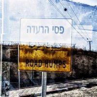 Израиль 2019 сентябрь..На границе с Палестиной :: Юрий Яньков