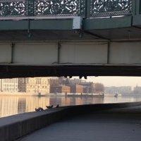 под Литейным мостом :: Елена