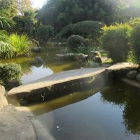 Сочи... Японский сад :: Нина Бутко