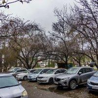 Листья упали, птицы улетели, а... машины остались -:) :: ~ Николай ~