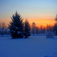 Раннее зимние утро :: Дмитрий (Горыныч) Симагин