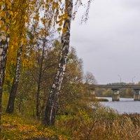 Осенний бережок :: Ольга Винницкая (Olenka)