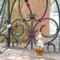 Пейте пиво пенное,морда будет здоровенная... :: Георгиевич