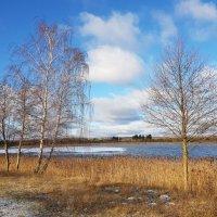 Первый день зимы :: Марина Ворошко (Митьковец)