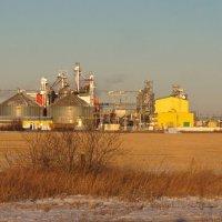 Районный маслозавод. :: сергей