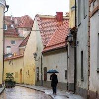 Осеннее настроение в Вильнюсе :: Наталия Л.