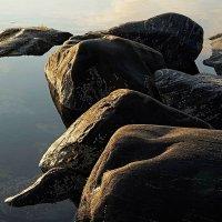 Утренние камни :: Сергей Курников