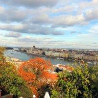 Панорама  Будапешта с высоты будайской крепости :: Гала