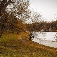 В осеннем парке.... :: Сергей Кичигин