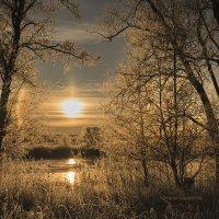 Зима рассказала сказку :: Наташа Баранова