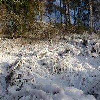 Зима идет на штурм :: Kventin Natabos