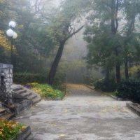 В старом парке...... :: Юрий Цыплятников