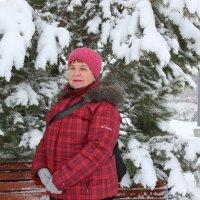 После снегопада. :: Венера Чуйкова