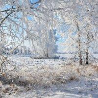 Зимы  холодное  дыхание :: Геннадий Супрун