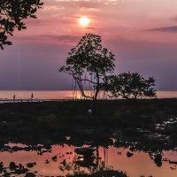 Андаманские острова. Индия. Закат. :: Ирина Малышева
