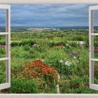 Вид из окна :: Андрей Синявин