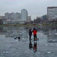 Дружба, которую не разлить водой (только водочкой) :: Андрей Лукьянов