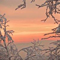 На исходе зимнего дня. :: Galina