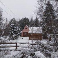 Зима в Медвежем :: Игорь Ушаков